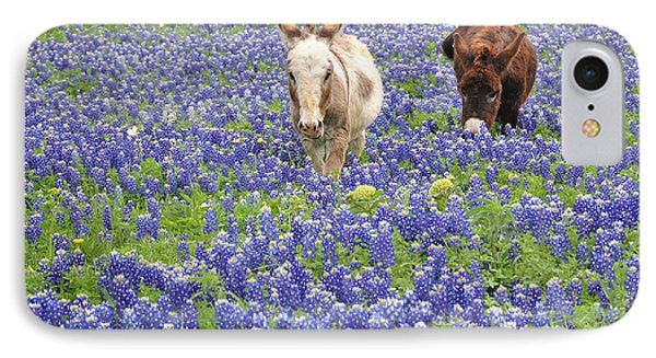 IPhone Case featuring the photograph Texas Donkeys And Bluebonnets - Texas Wildflowers Landscape by Jon Holiday