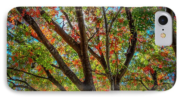 IPhone Case featuring the photograph Texas Fall Glory by Ross Henton