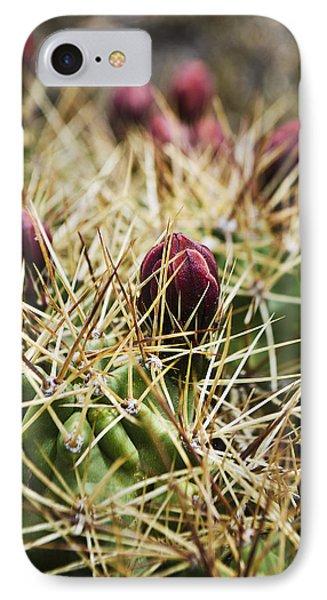 Texas Blooming Cactus IPhone Case