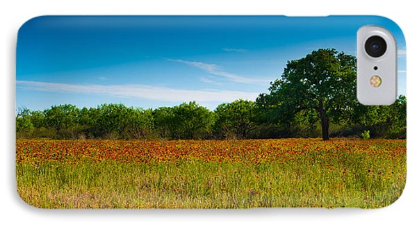 IPhone Case featuring the photograph Texas Hill Country Meadow by Darryl Dalton