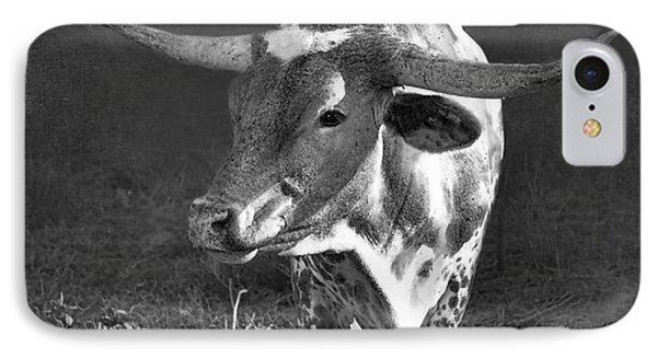 Texas Longhorn # 5 IPhone Case by Betty LaRue