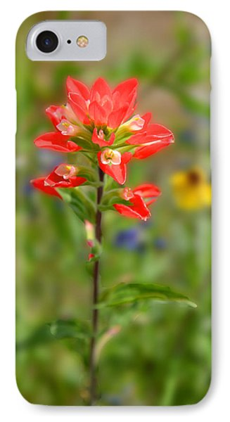 Texas Red Indian Paintbrush Phone Case by Lynn Bauer