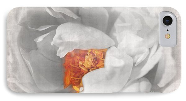 IPhone Case featuring the photograph Textured Summer Rose by Eden Baed