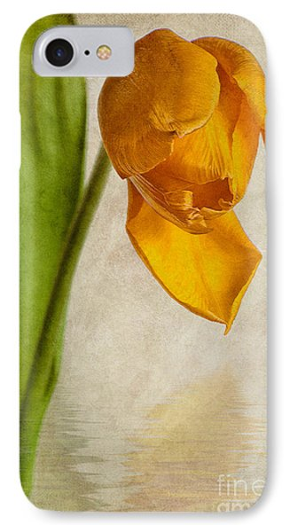Textured Tulip IPhone Case by John Edwards
