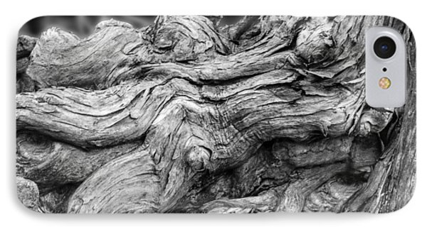 Textures Of Nature Black And White IPhone Case by Jack Zulli