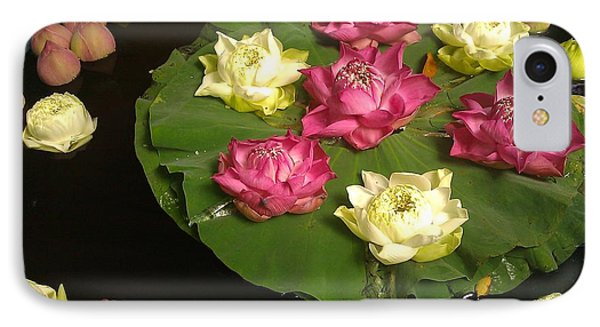 Thai Lilies  IPhone Case by Ted Williams