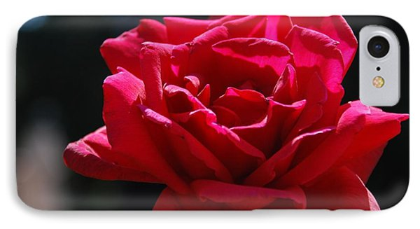 That Which We Call A Rose IPhone Case by Eric Tressler