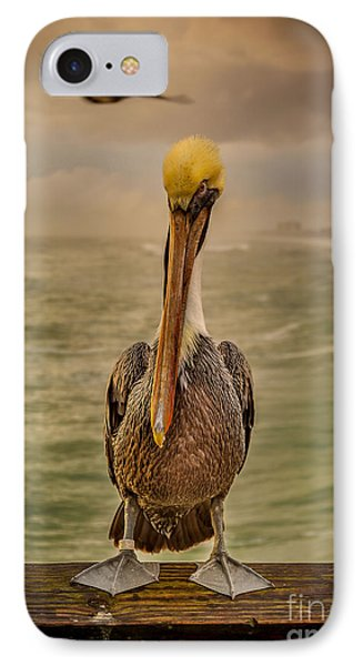 That's Mr. Pelican To You IPhone Case by Steven Reed