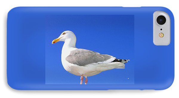 IPhone Case featuring the photograph The Admiral by Will Borden
