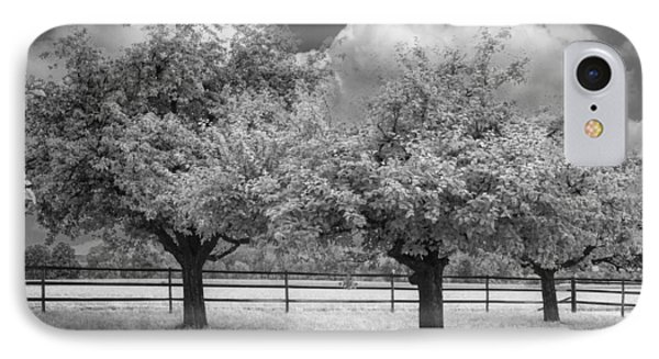 The Apple Orchard Phone Case by Debra and Dave Vanderlaan