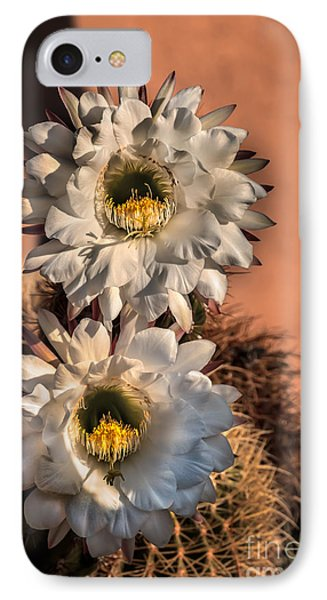 The Argentine Giant Twins IPhone Case by Robert Bales
