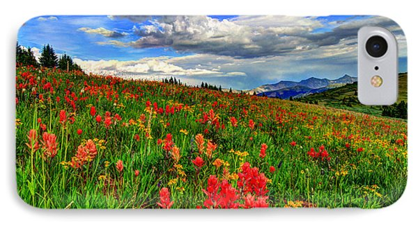 The Art Of Wildflowers IPhone Case
