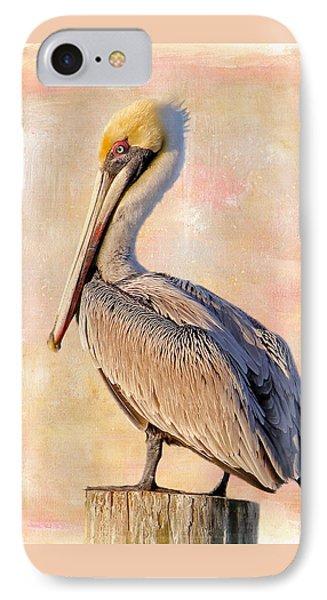 Birds - The Artful Pelican IPhone Case