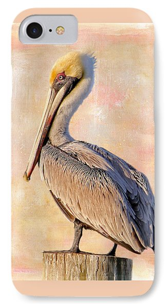 Birds - The Artful Pelican IPhone Case by HH Photography of Florida