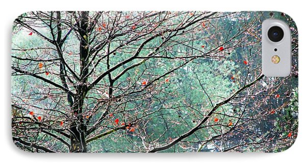 The Aura Of Trees Phone Case by Angela Davies
