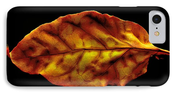 The Autumn Leaf IPhone Case by Marwan Khoury