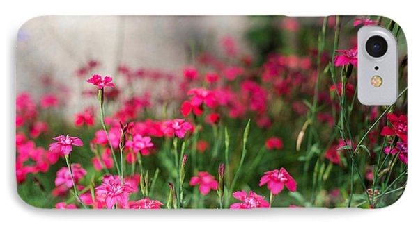 The Beauty Of Maiden Pinks IPhone Case