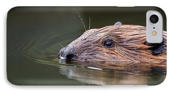 The Beaver IPhone 7 Case by Bill Wakeley