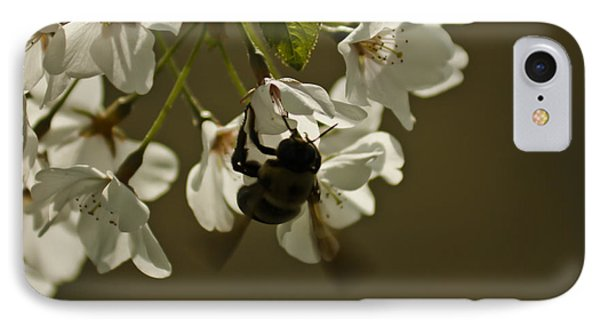 The Bee IPhone Case by Debra Crank