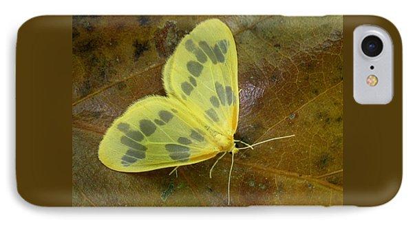 The Beggar Moth IPhone Case