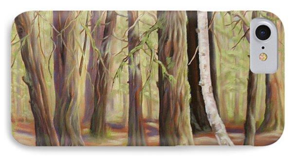 The Birch Tree IPhone Case