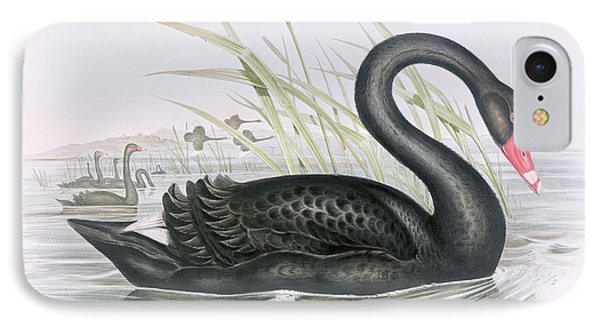 The Black Swan IPhone Case by John Gould