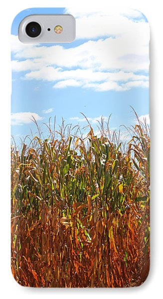IPhone Case featuring the photograph The Bloody Cornfield by Debra Kaye McKrill