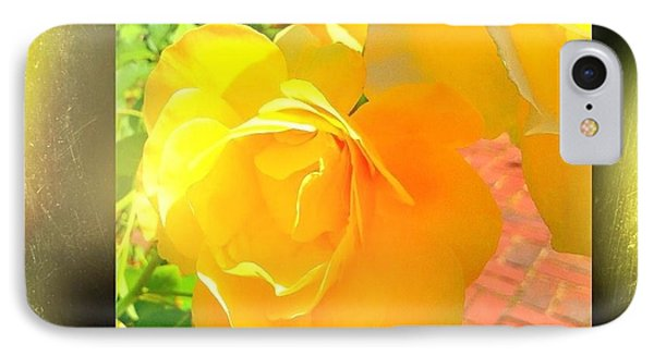 IPhone Case featuring the photograph The Blushing Yellow Rose by Becky Lupe
