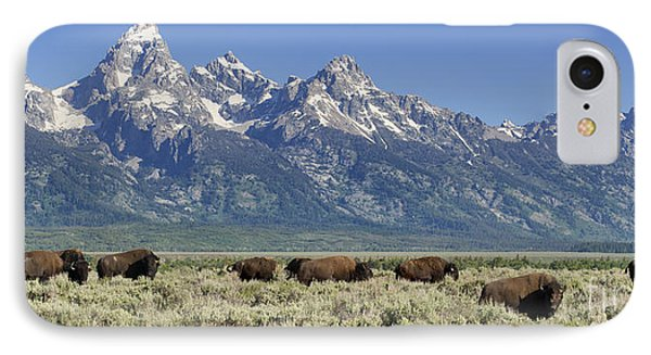 The Boys Club Of Grand Teton Phone Case by Sandra Bronstein