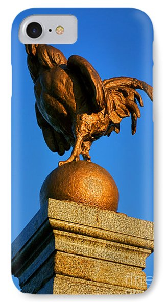 The Bronze Rooster Phone Case by Olivier Le Queinec