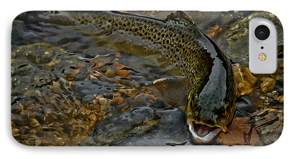The Brown Trout Phone Case by Ernie Echols
