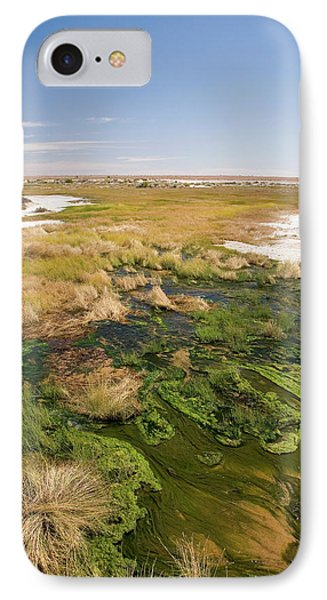The Bubbler Mound Spring, Oodnadatta IPhone Case by David Wall