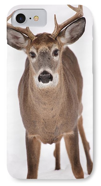The Buck Stops Here Phone Case by Karol Livote