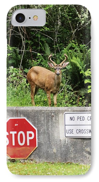 The Buck Stops Here Phone Case by Kym Backland