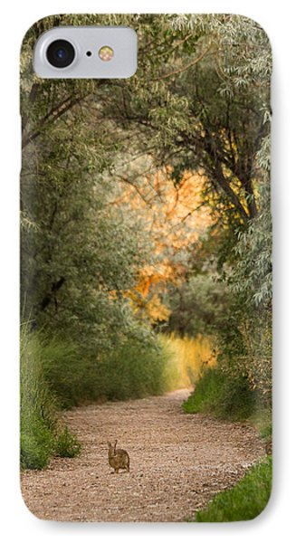 The Bunny Trail IPhone Case by Heidi Hermes