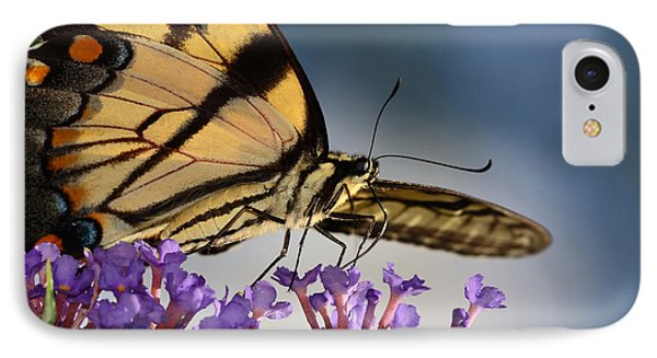 The Butterfly IPhone Case by Lori Tambakis
