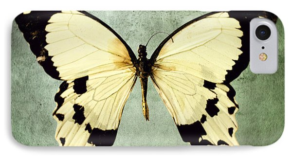 The Butterfly Project 1 Phone Case by Diane Miller