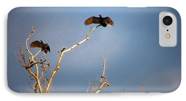 The Buzzard Roost IPhone Case by Joyce Dickens