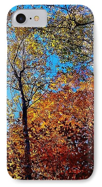 The Canopy IPhone Case by Daniel Thompson
