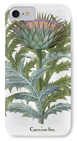 The Cardoon, From The Hortus IPhone Case by German School