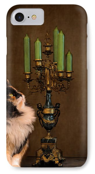 The Cat And The Candelabra Phone Case by Jai Johnson