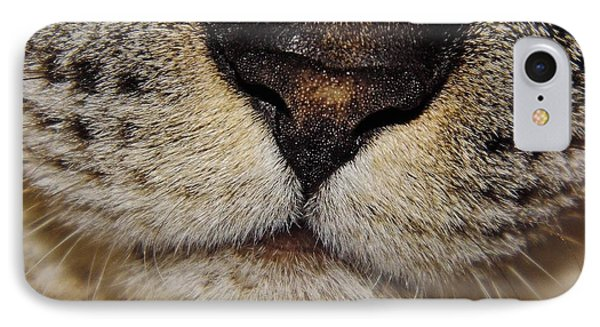 The - Cat - Nose IPhone Case by D Hackett