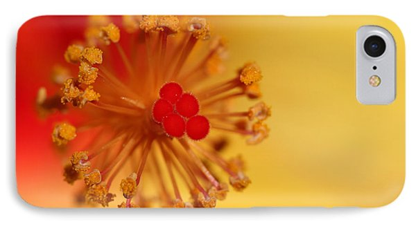 IPhone Case featuring the photograph The Center Of The Hibiscus Flower by Debbie Oppermann