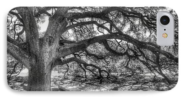 The Century Oak IPhone 7 Case by Scott Norris
