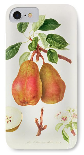 The Chaumontelle Pear IPhone 7 Case by William Hooker