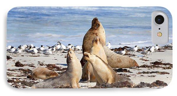 Kangaroo iPhone 7 Case - The Choir by Mike Dawson