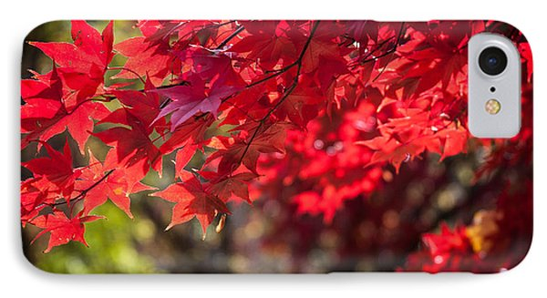 The Color Of Fall IPhone Case by Patrice Zinck