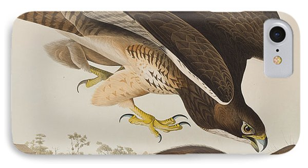The Common Buzzard IPhone 7 Case