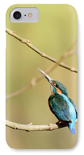 The Common Kingfisher IPhone Case by Fotosas Photography