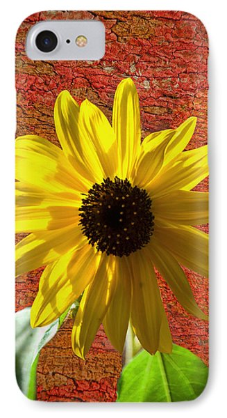 The Contrast Of Time IPhone Case by Sandi OReilly